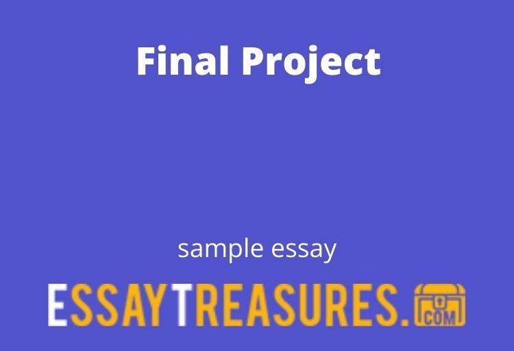 Final Project essay