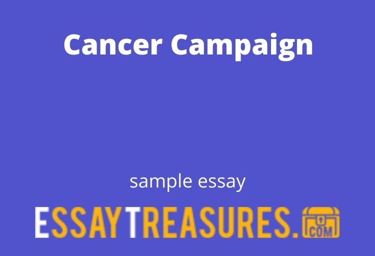 Cancer Campaign essay
