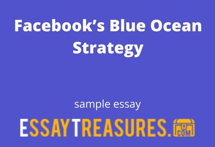 Facebook's Blue Ocean Strategy essay