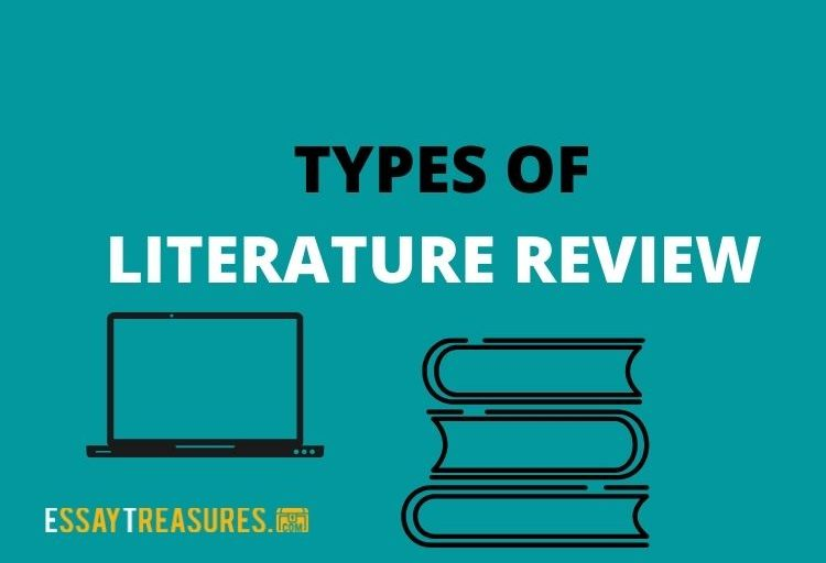 types of literature review